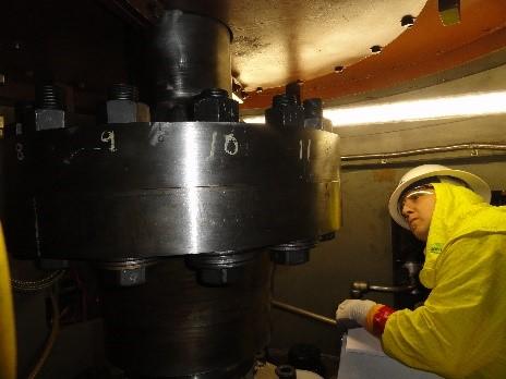 Reactor Coolant Pump & Motor Services